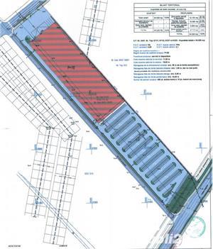 oferta speciala !!! 3,45 hectare in calea sagului, la artera linga arabesque. PUZ aprobat - imagine 3