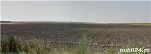 Jud Giurgiu teren agricol - imagine 1