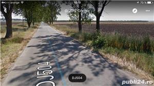 Jud Giurgiu teren agricol - imagine 2