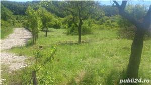 Teren intravilan in Bistrita, pe Valea Jelnei, 6675 mp  - imagine 2