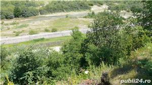 Vand teren intravilan Maneciu Paminteni - imagine 12