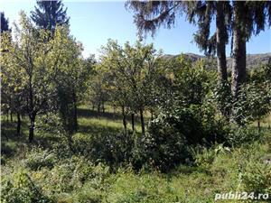 Casa 4 cam, peisaj mirific, la 3 km de Campina - imagine 2