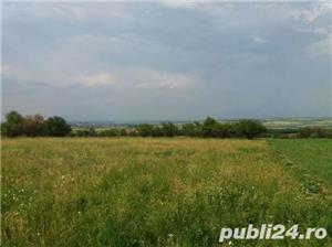Teren extravilan in Oradea - imagine 5