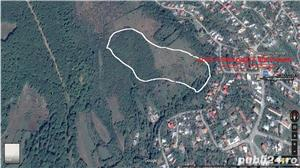 5 ha teren extravilan, pozitie excelenta, centru Comunei Scorteni, jud Prahova - imagine 8