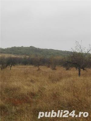 5 ha teren extravilan, pozitie excelenta, centru Comunei Scorteni, jud Prahova - imagine 9
