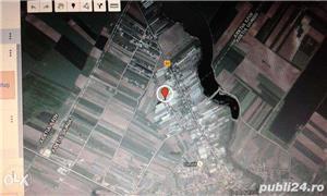 TEREN INTRAVILAN 1250M Dobreni 2 km comuna Berceni  10 KM BUCURESTI - imagine 4