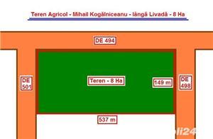 Teren Agricol - 31 Ha = 8 Ha + ( 10 Ha + 13 Ha ) - 12.000 Euro / Ha - imagine 5
