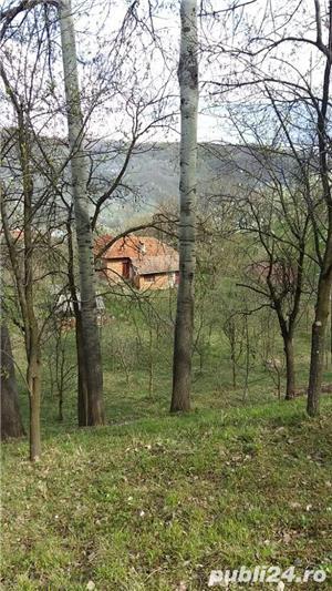 Casa si livada Malu cu Flori judetul Dambovita  - imagine 3