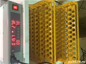 incubator oua automat - imagine 6