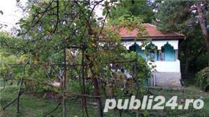 vand casa taraneasca - imagine 3