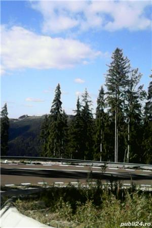 Caut  teren la munte,deal - imagine 4