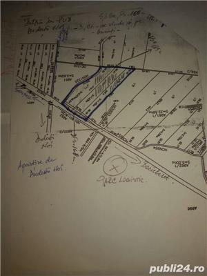 teren 5.3 ha C.Torontalului - imagine 2