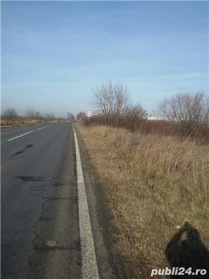 teren 5.3 ha C.Torontalului - imagine 3