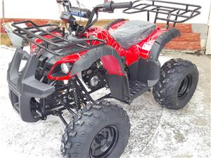 Atv Atv GORILLA 2WD4 Nou 2017 - imagine 3