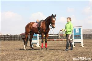 SHABA(cal sport romanesc) - imagine 1