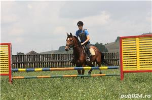 SHABA(cal sport romanesc) - imagine 8