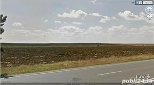 Jud Giurgiu, teren agricol - imagine 2