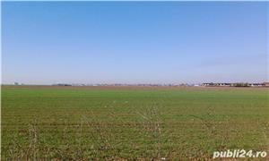 Teren 12000mp pe dn1 pe centura de vest a orașului Ploiești.  - imagine 1