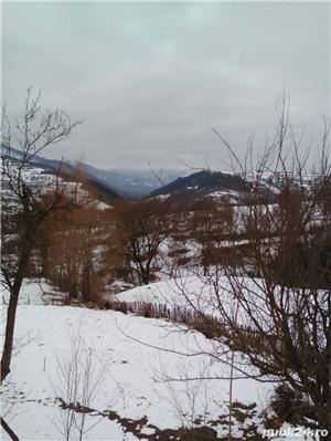 Caut  teren la munte,deal - imagine 2