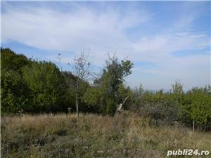 Teren de vanzare deosebit sat Marginea Padurii, jud. Prahova - imagine 9