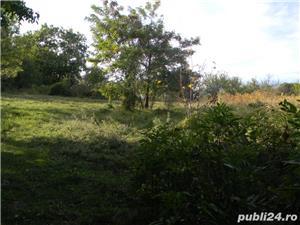 Teren de vanzare deosebit sat Marginea Padurii, jud. Prahova - imagine 3
