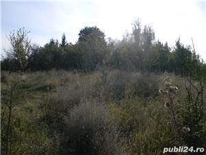 Teren de vanzare deosebit sat Marginea Padurii, jud. Prahova - imagine 8