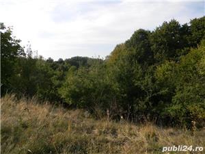 Teren de vanzare deosebit sat Marginea Padurii, jud. Prahova - imagine 10