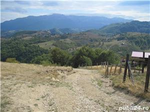 teren ieftin sat Sirnea - comuna Fundata - imagine 2