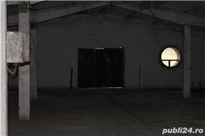 De inchiriat Pielesti hale (productie,depozitare,) - imagine 9