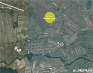 De vanzare 66.000 mp in Remetea Mare - imagine 1
