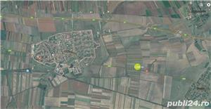 De vanzare 17.500 mp la DN6, in Recas - imagine 1