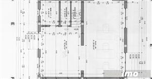 Ghiroda- proiect deosebit- Triplex-comision 0%! - imagine 4