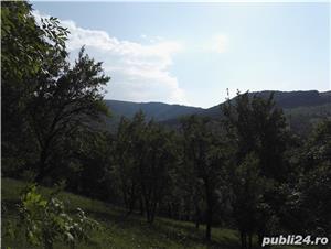 Teren Valea Doftanei - imagine 3