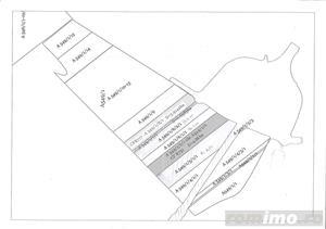 De vanzare 5ha de teren in Giarmata langa autostrada  - imagine 2