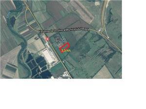 Vanzare teren 2,5 ha - imagine 2