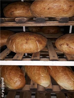 Inchiriere brutarie - imagine 1