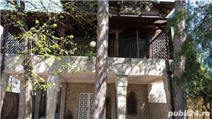 Baneasa-Zoo, Iancu Nicolae, imobil deosebit 600mp, teren 1390mp. - imagine 10