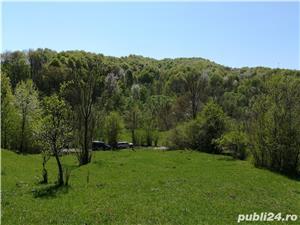 Provita, teren pt casa de vacanta, 7500 mp, priveliste mirifica - imagine 1