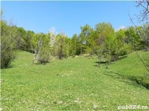 Provita, teren pt casa de vacanta, 7500 mp, priveliste mirifica - imagine 5