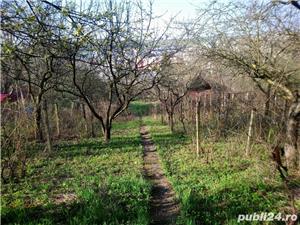 Teren de vanzare- 1600mp Livada + cabana  70 mp Posada -Tg Mures - imagine 3