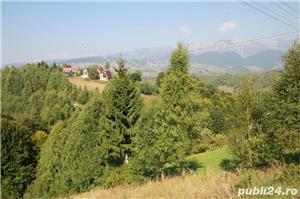 2 vile Moieciu - Twin Villas Moieciu - imagine 6