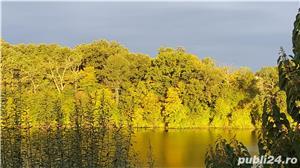 Vanzare vila pe malul lacului Pasare 3, Branesti , jud. Ilfov - imagine 1