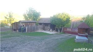 vand casa in sanmihaiul de campie  - imagine 13