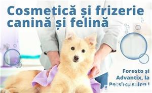 Frizerie/Cosmetica Canina si Felina la Salon, in Sectorul 3.  - imagine 2