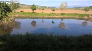 vand teren cabana, investitii ,teren casa, spatiu comercial - imagine 5