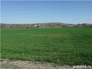 Teren Valea Calugareasca Prahova Ploiesti Investiție - imagine 7