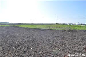 Teren industrial in Dumbravita, drumul spre Covaci - imagine 3