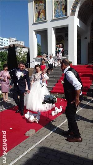 Porumbei pentru  Nunti Timisoara - imagine 3