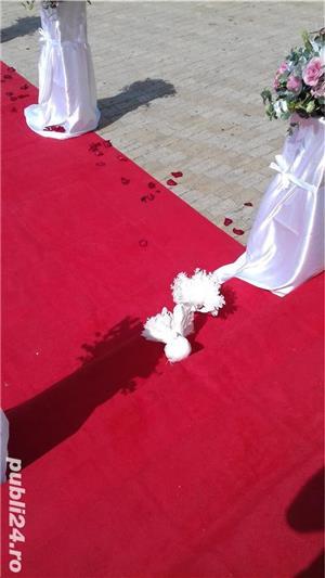 Porumbei pentru  Nunti Timisoara - imagine 1