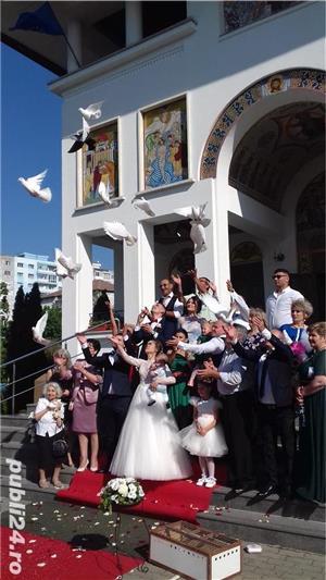 Porumbei pentru  Nunti Timisoara - imagine 2